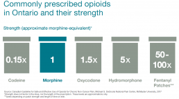 Commonly prescribed opioids in Ontario and their strength